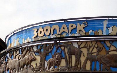 Зоопарк Удмуртии примет спасённых животных