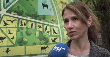 Сотрудники рассказали, как развивается Кишиневский зоопарк и какие животные в нем появились