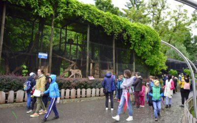 1 iunie la Grădina Zoologică